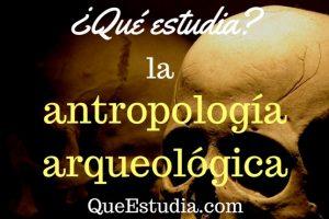 que estudia la antropologia arqueologica