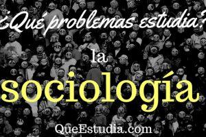 problemas que estudia la sociologia