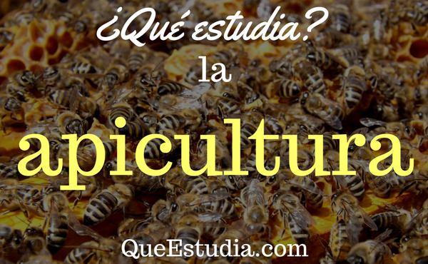que estudia la apicultura
