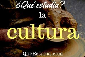 que estudia la cultura