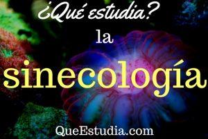 que estudia la sinecologia