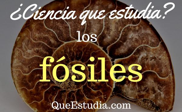 ciencia que estudia los fosiles