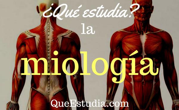 Qué estudia la miología?