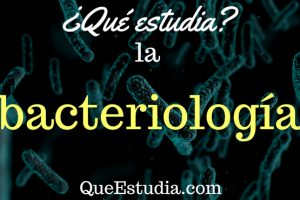 que estudia la bacteriologia