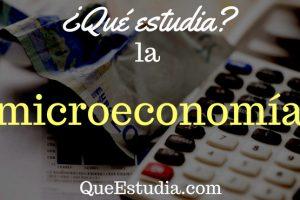 que estudia la microeconomia