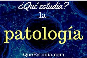 que estudia la patologia